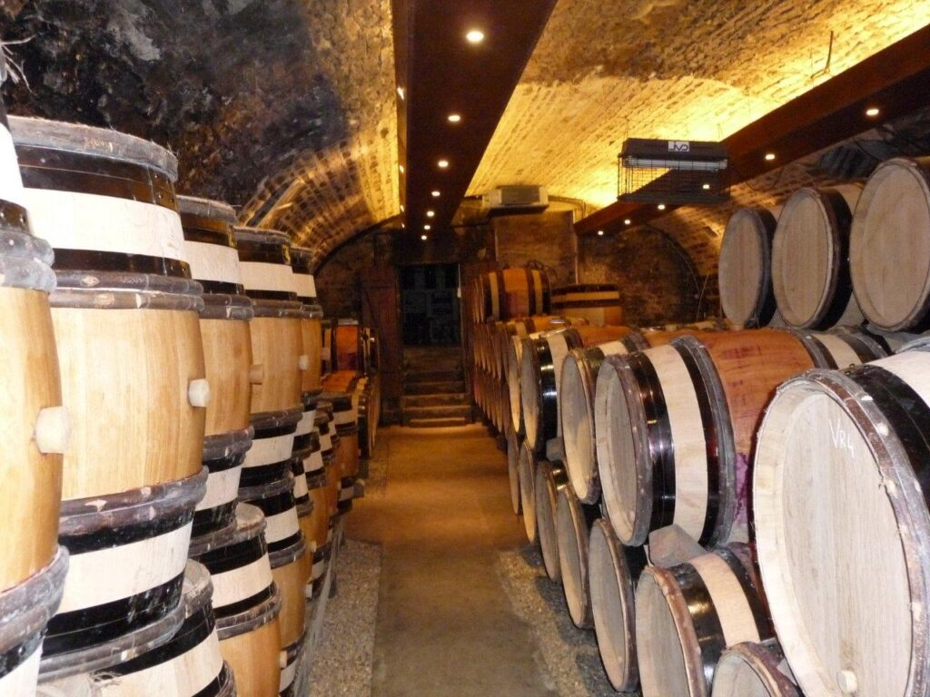 Climatisation cave viticole