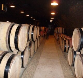 ADPE clim cave Chambolle Musigny